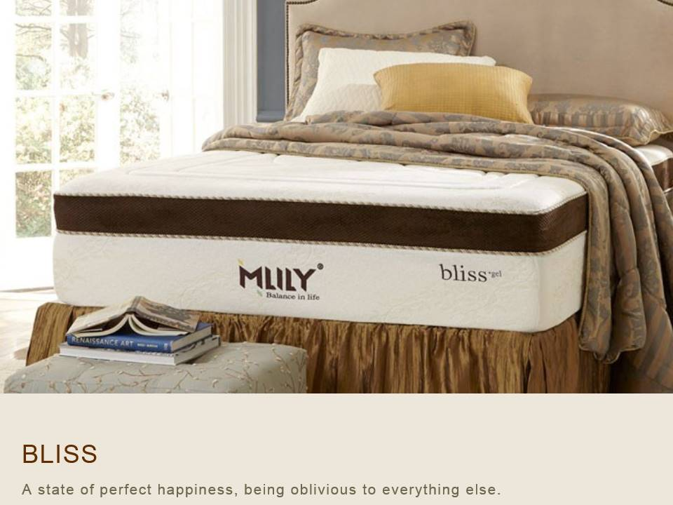 Exceptionnel MLILY Memory Foam Mattresses